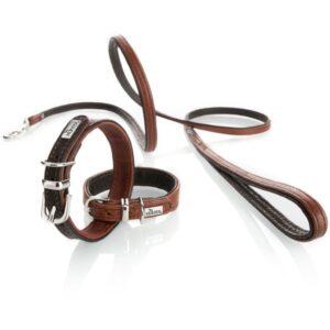 Collar cody petit + leiband
