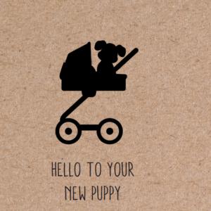 wenskaart puppy hello new puppy
