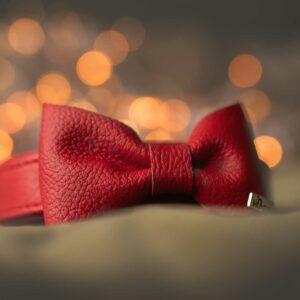 bow tie paris hunter